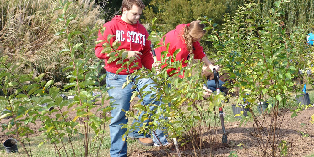 Horticulture Landscaping Students
